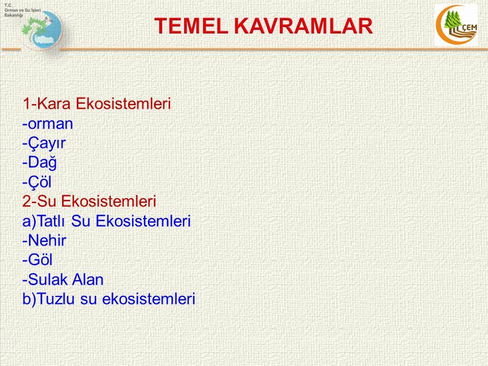 TEMEL KAVRAMLAR 1-Kara Ekosistemleri -orman -Çayır -Dağ -Çöl