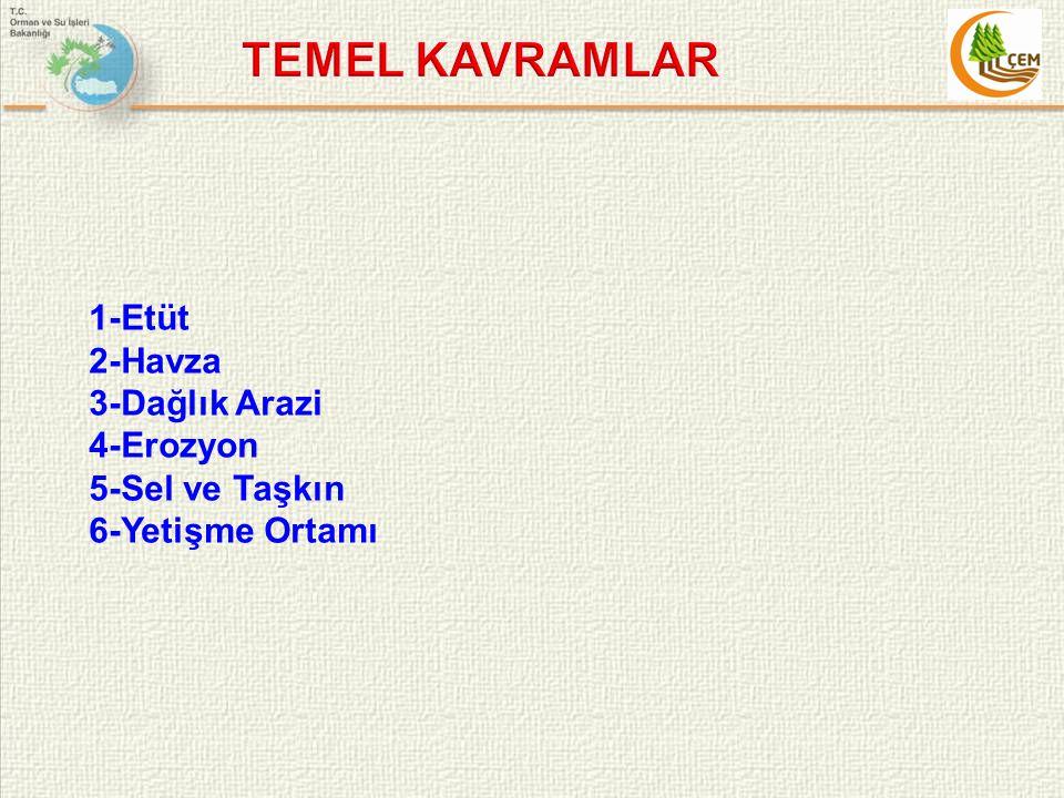 TEMEL KAVRAMLAR 1-Etüt 2-Havza 3-Dağlık Arazi 4-Erozyon 5-Sel ve Taşkın 6-Yetişme Ortamı