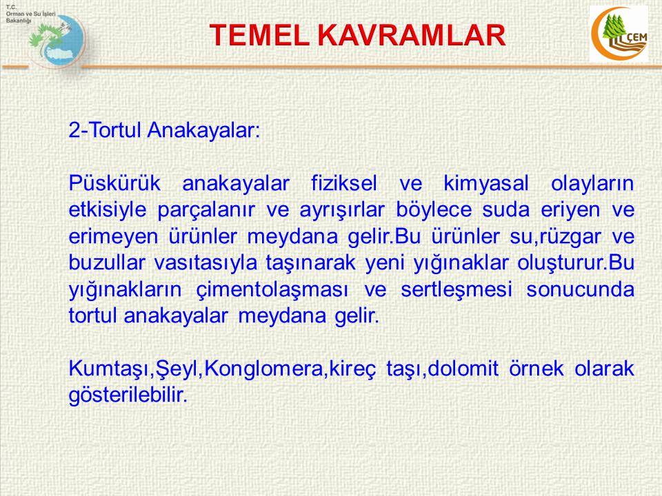 TEMEL KAVRAMLAR 2-Tortul Anakayalar: