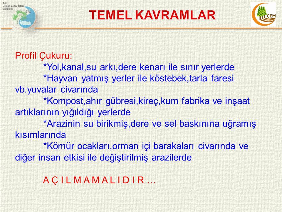 TEMEL KAVRAMLAR Profil Çukuru: