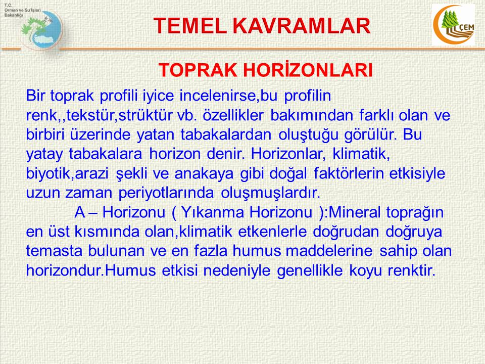 TEMEL KAVRAMLAR TOPRAK HORİZONLARI
