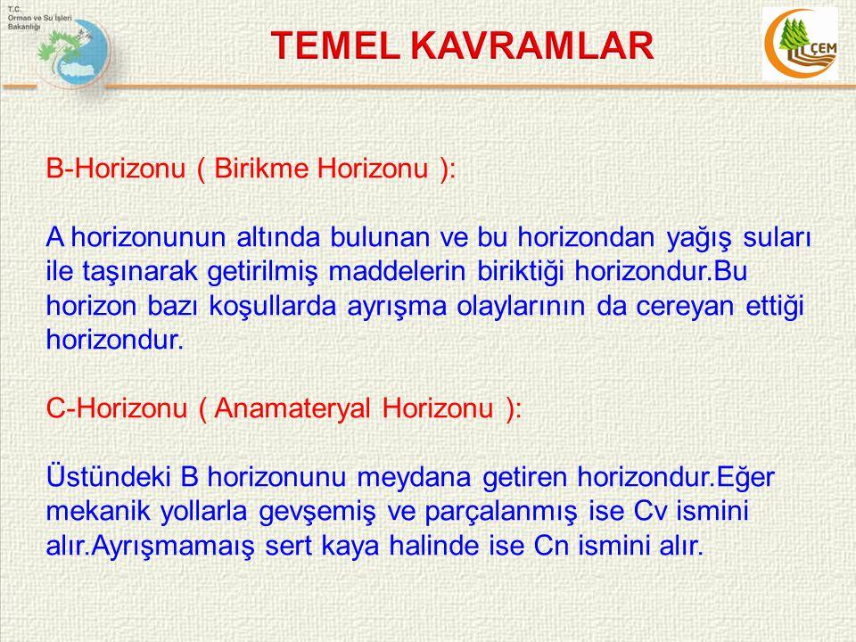 TEMEL KAVRAMLAR B-Horizonu ( Birikme Horizonu ):