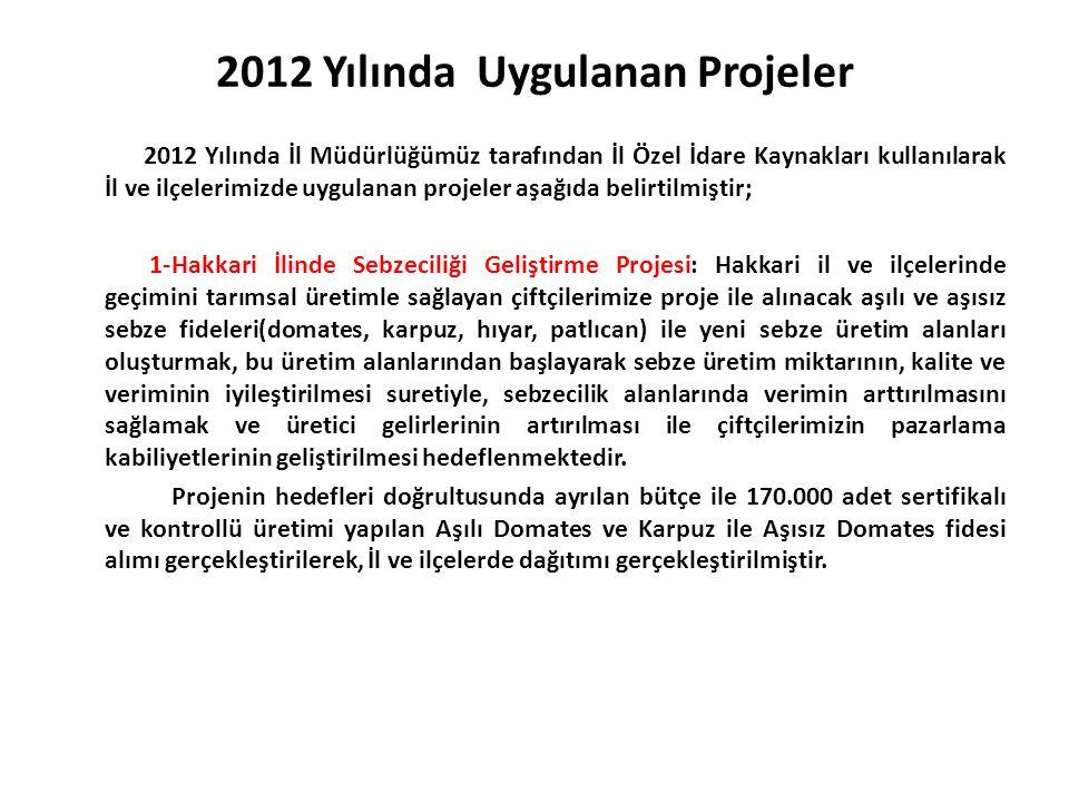 2012 Yılında Uygulanan Projeler