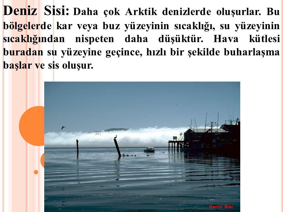 Deniz Sisi: Daha çok Arktik denizlerde oluşurlar