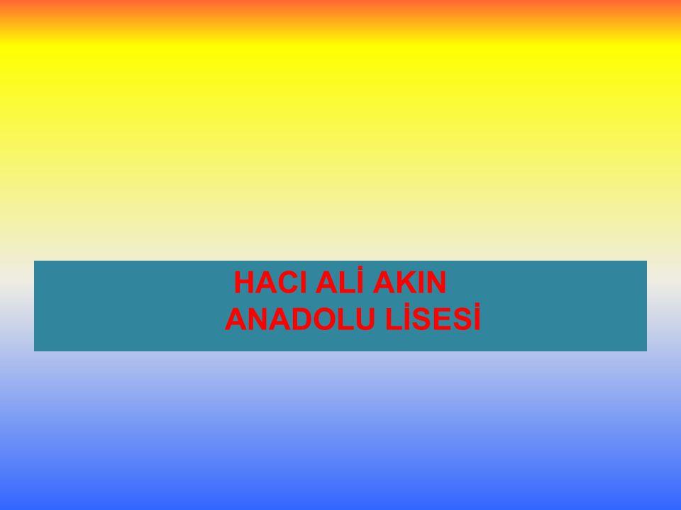HACI ALİ AKIN ANADOLU LİSESİ