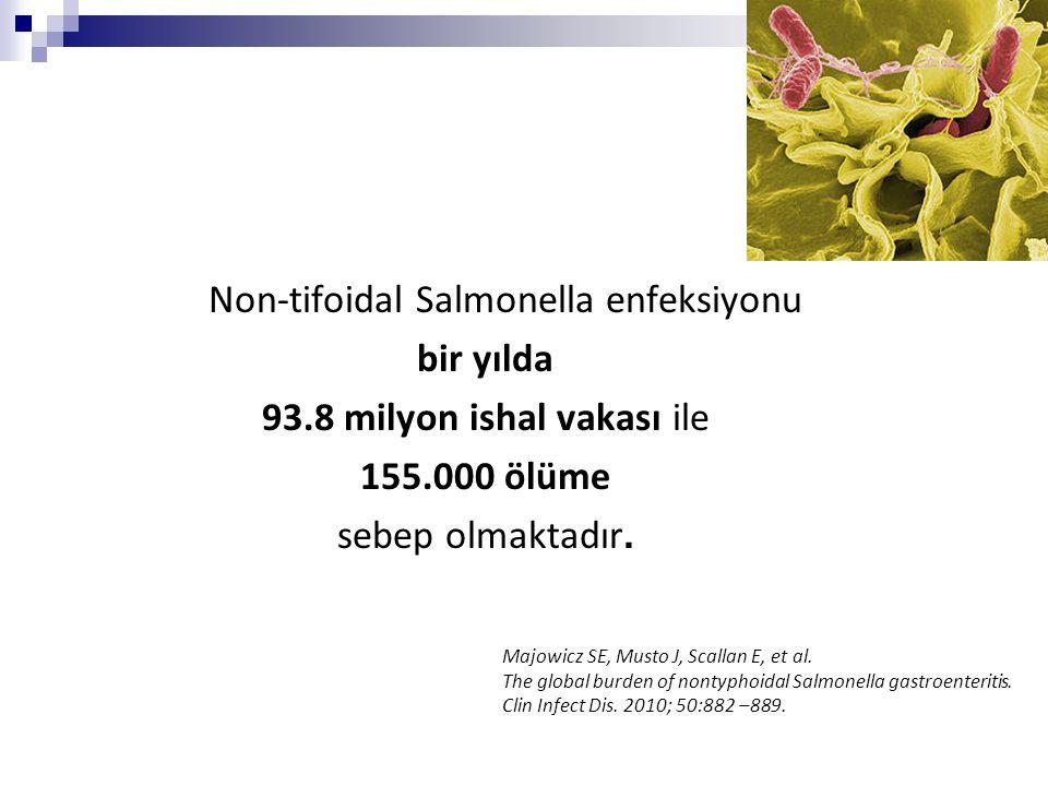 Non-tifoidal Salmonella enfeksiyonu