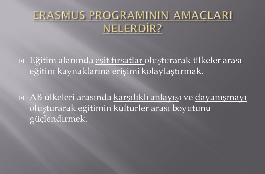 ERASMUS PROGRAMININ AMAÇLARI NELERDİR