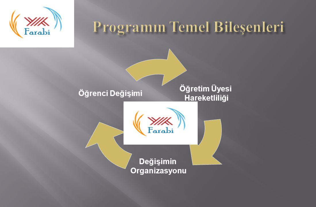 Programın Temel Bileşenleri