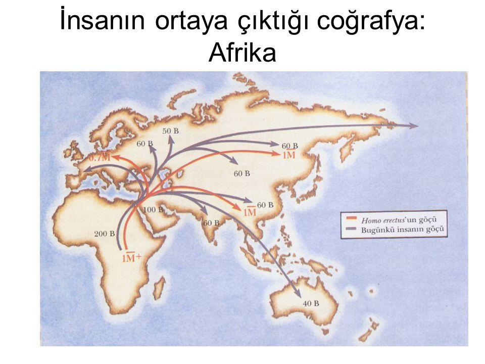 İnsanın ortaya çıktığı coğrafya: Afrika Afrika'dan çıkış tezi: Cennet Bahçesi kuramı