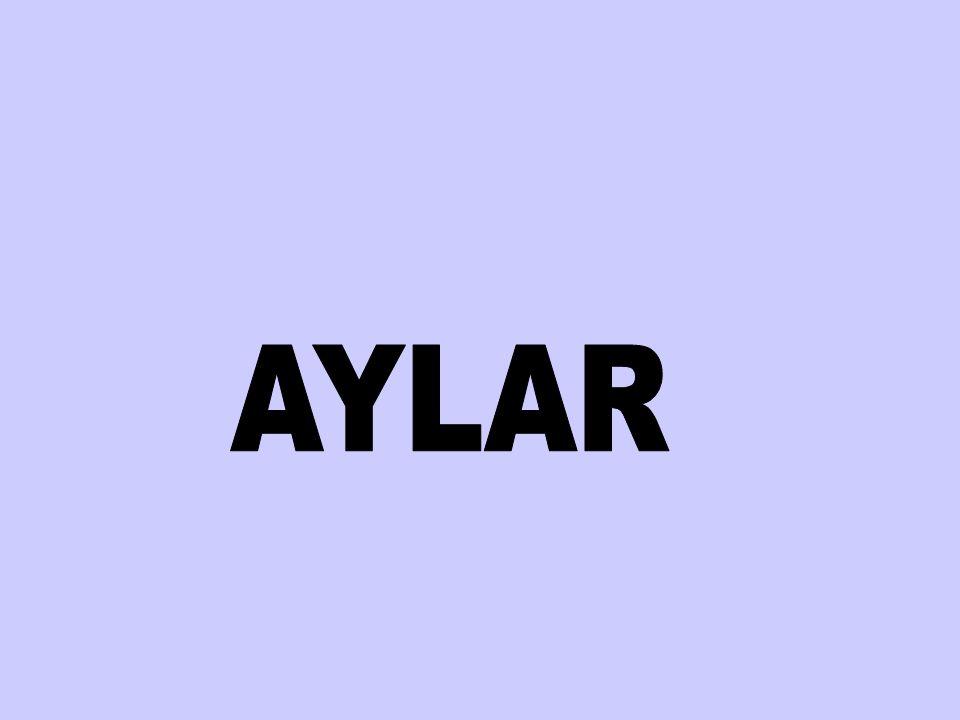 AYLAR