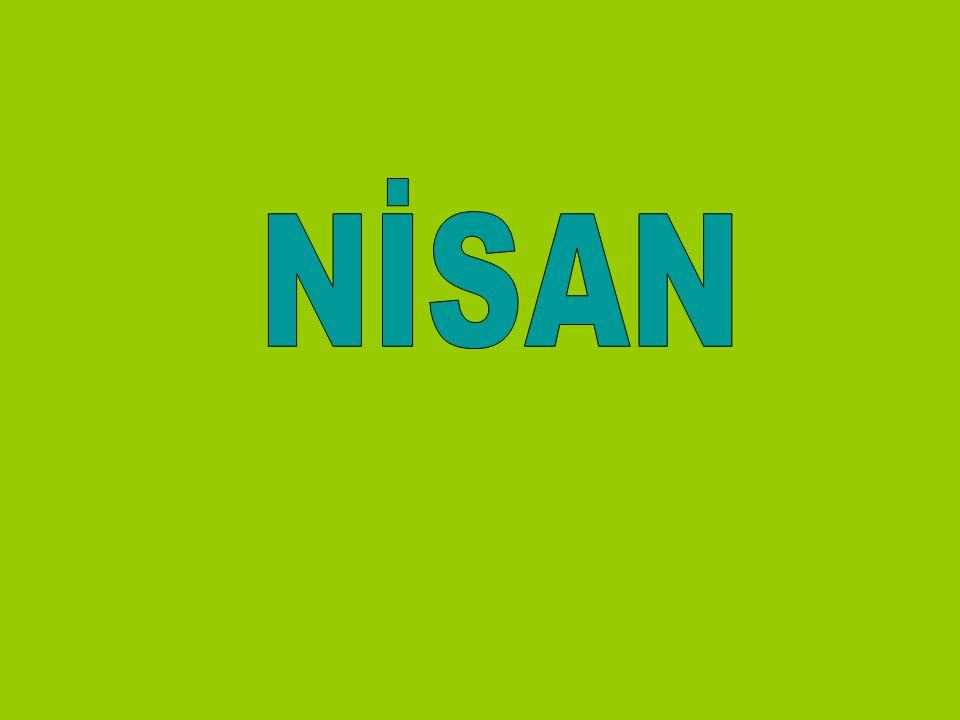 NİSAN