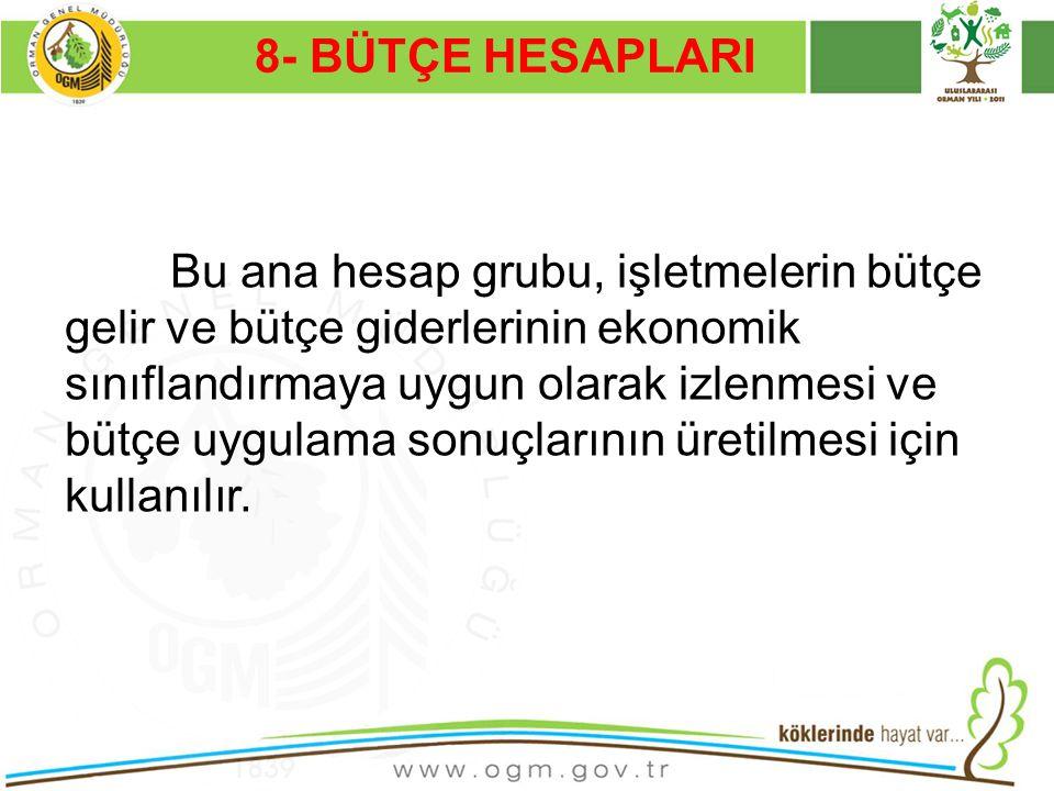 8- BÜTÇE HESAPLARI Kurumsal Kimlik. 16/12/2010.