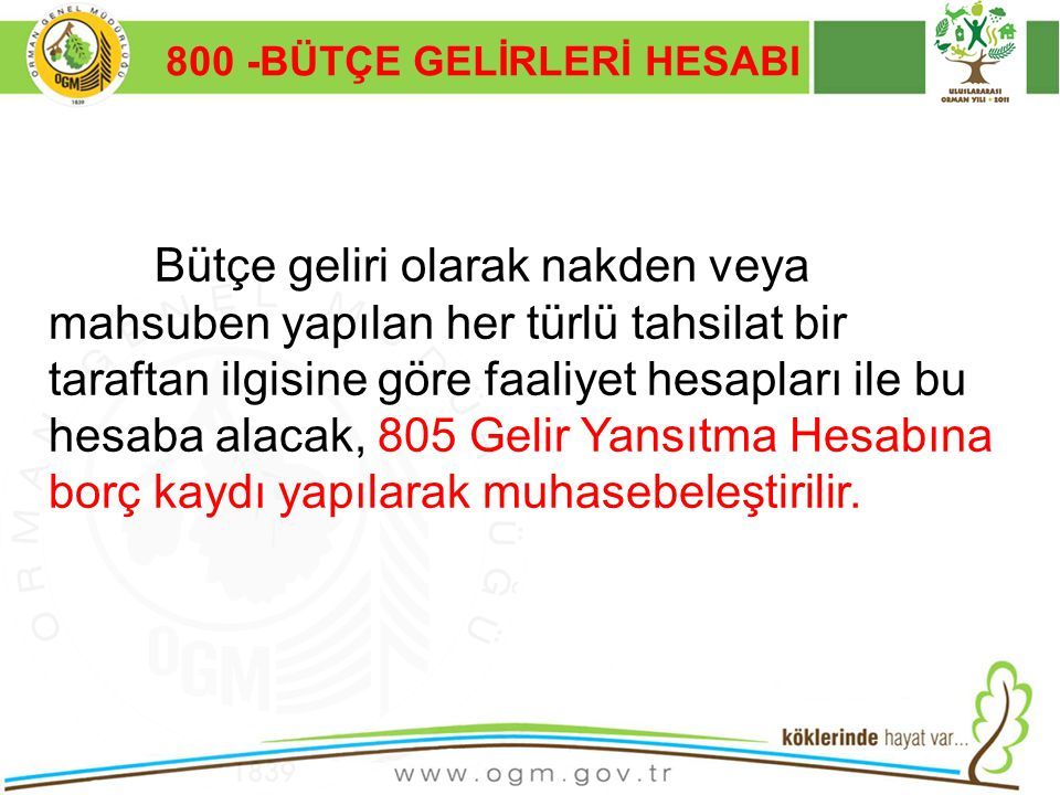 800 -BÜTÇE GELİRLERİ HESABI