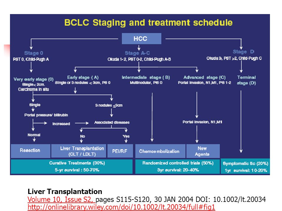 Liver Transplantation Volume 10, Issue S2, pages S115-S120, 30 JAN 2004 DOI: 10.1002/lt.20034 http://onlinelibrary.wiley.com/doi/10.1002/lt.20034/full#fig1