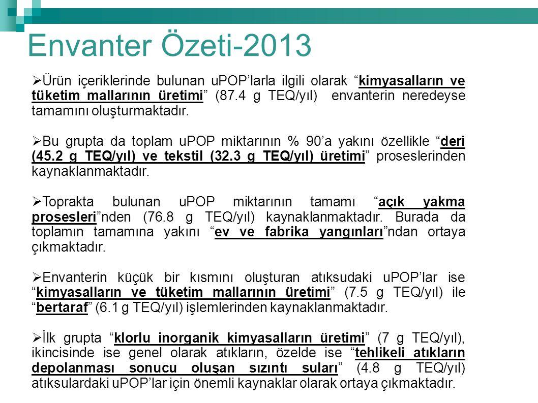 Envanter Özeti-2013