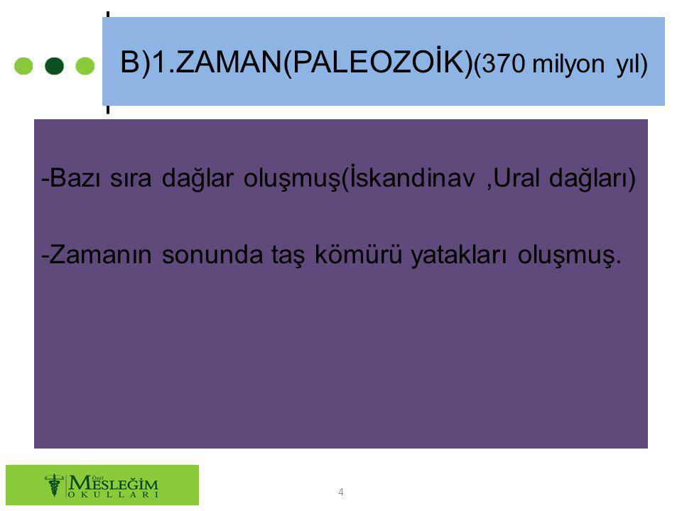 B)1.ZAMAN(PALEOZOİK)(370 milyon yıl)