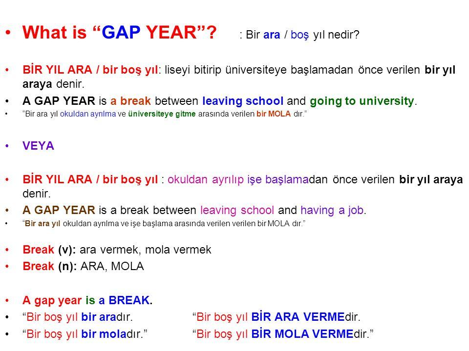 What is GAP YEAR : Bir ara / boş yıl nedir