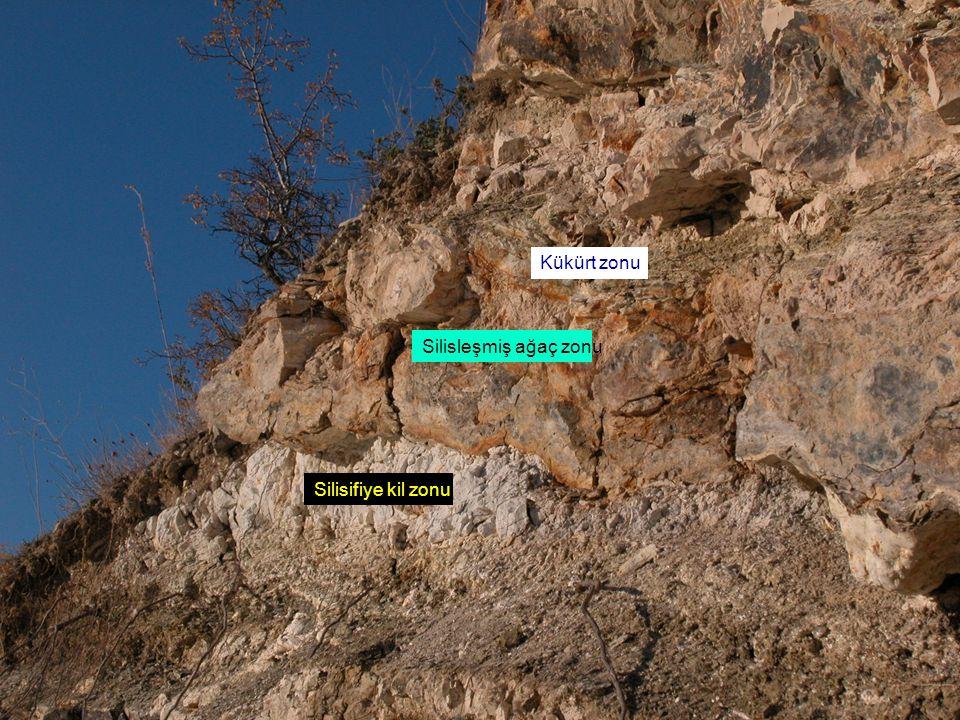 Kükürt zonu Silisleşmiş ağaç zonu Silisifiye kil zonu