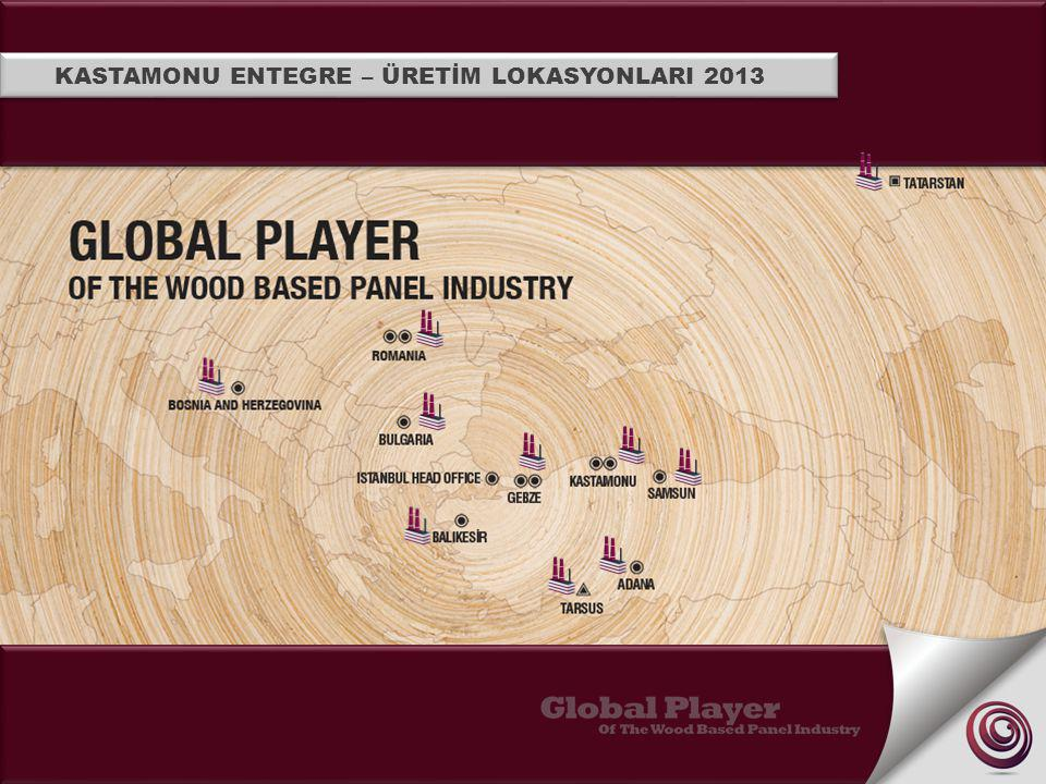 KASTAMONU INTEGRATED'S PRODUCTION LOCATIONS 2013
