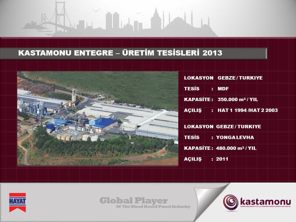 KASTAMONU ENTEGRE – ÜRETİM TESİSLERİ 2013
