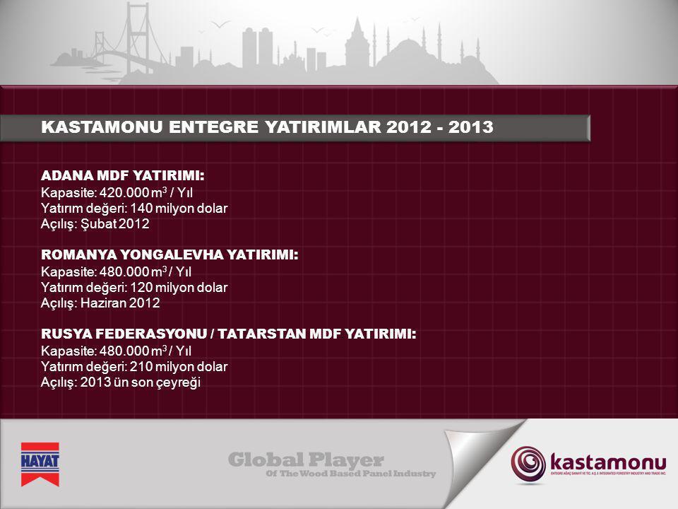 KASTAMONU ENTEGRE YATIRIMLAR 2012 - 2013
