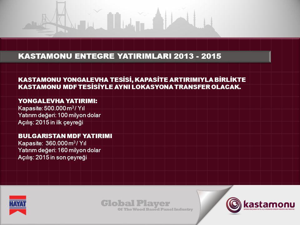 KASTAMONU ENTEGRE YATIRIMLARI 2013 - 2015