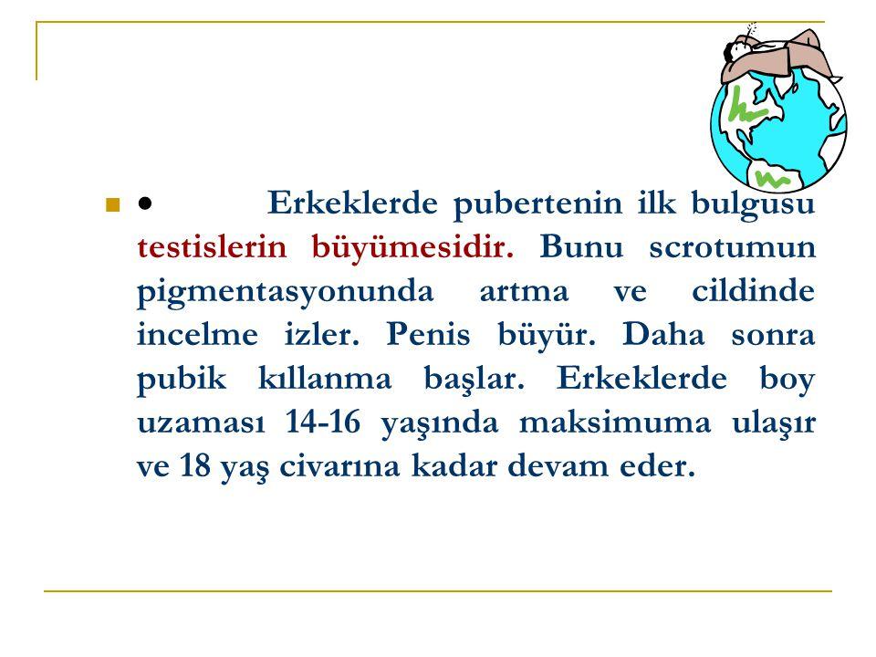 · Erkeklerde pubertenin ilk bulgusu testislerin büyümesidir