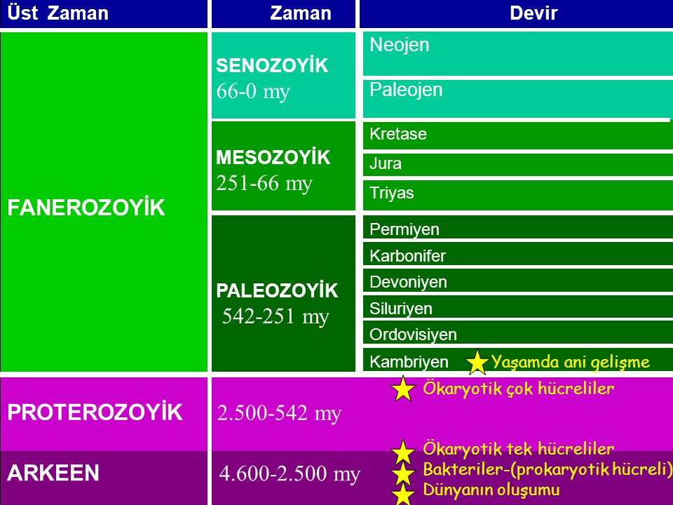 66-0 my FANEROZOYİK 251-66 my 542-251 my PROTEROZOYİK 2.500-542 my
