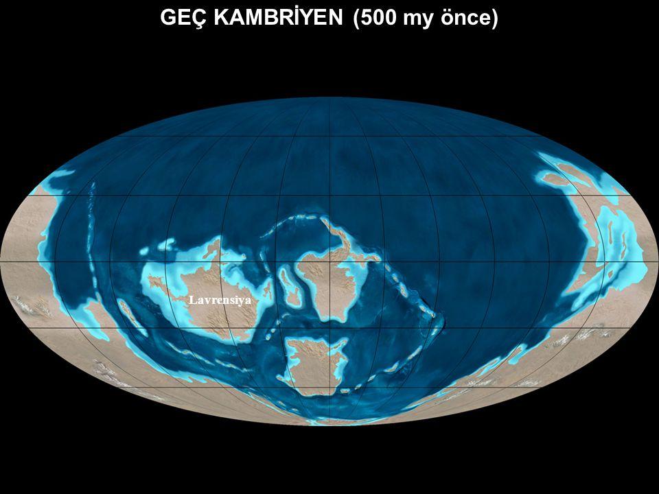 GEÇ KAMBRİYEN (500 my önce)