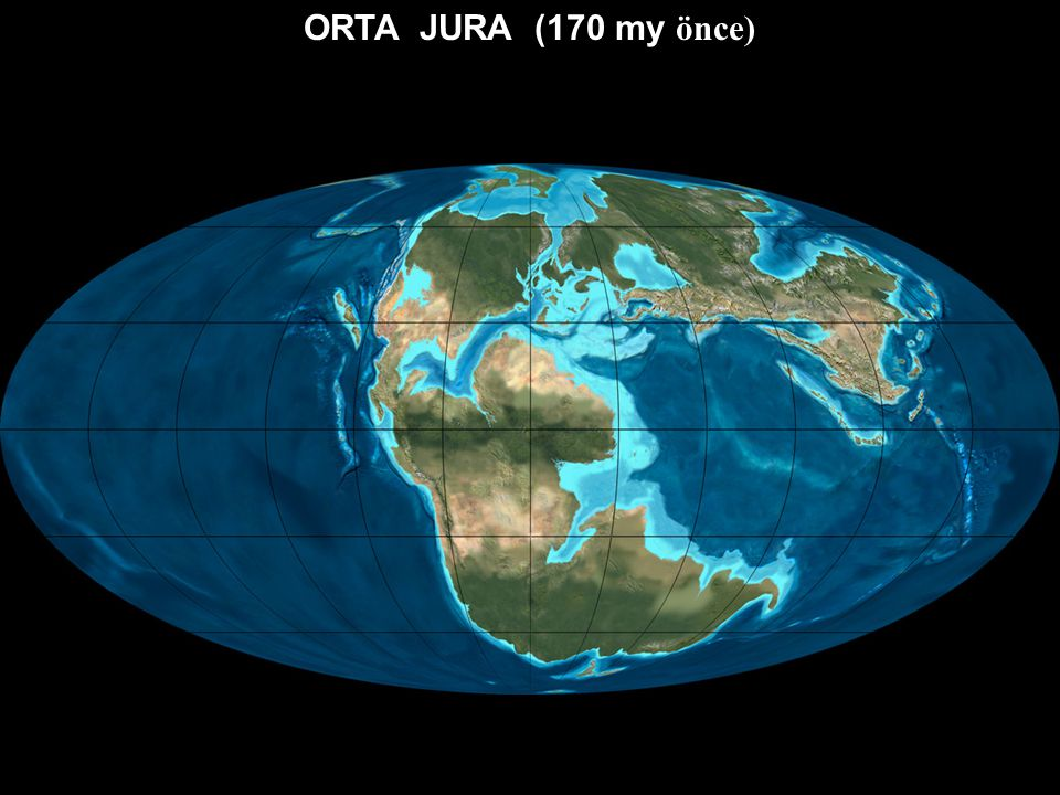 ORTA JURA (170 my önce)