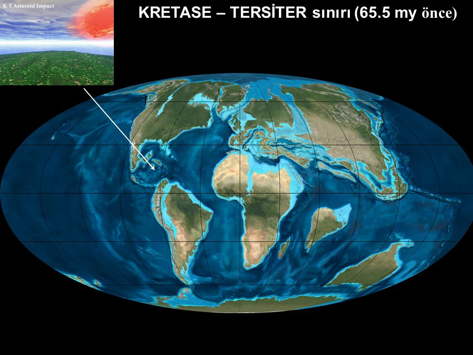 KRETASE – TERSİTER sınırı (65.5 my önce)
