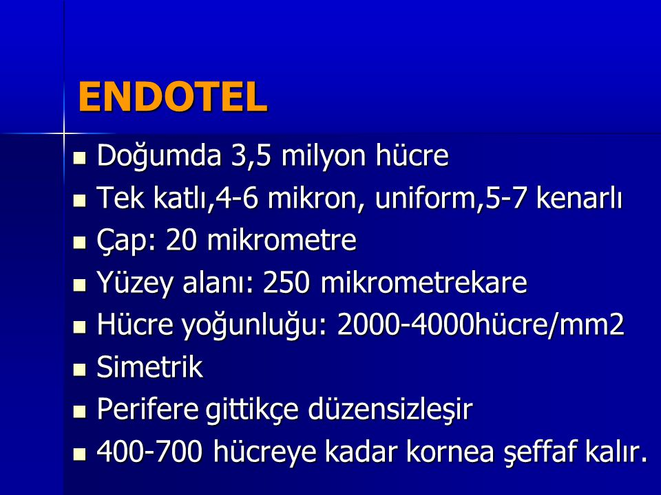 ENDOTEL Doğumda 3,5 milyon hücre
