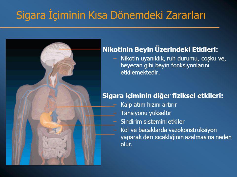 Sigara İçiminin Kısa Dönemdeki Zararları