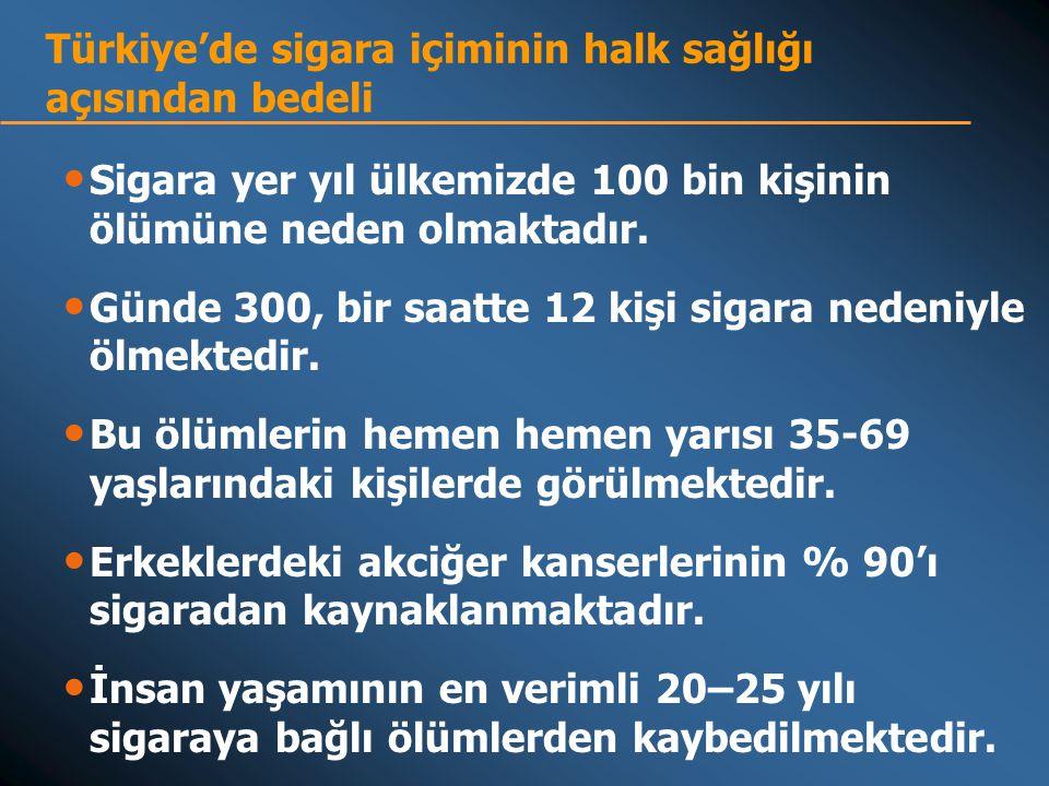 Türkiye'de sigara içiminin halk sağlığı açısından bedeli