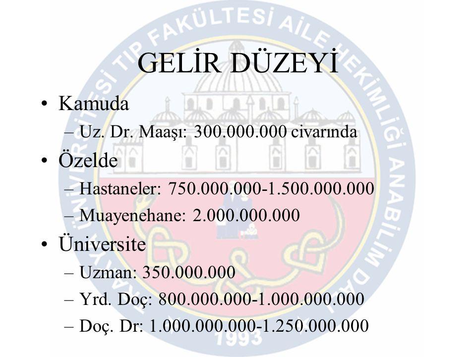 GELİR DÜZEYİ Kamuda Özelde Üniversite