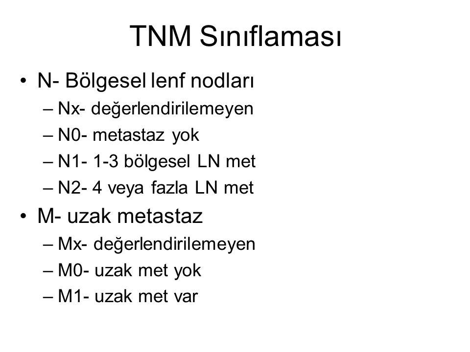 TNM Sınıflaması N- Bölgesel lenf nodları M- uzak metastaz