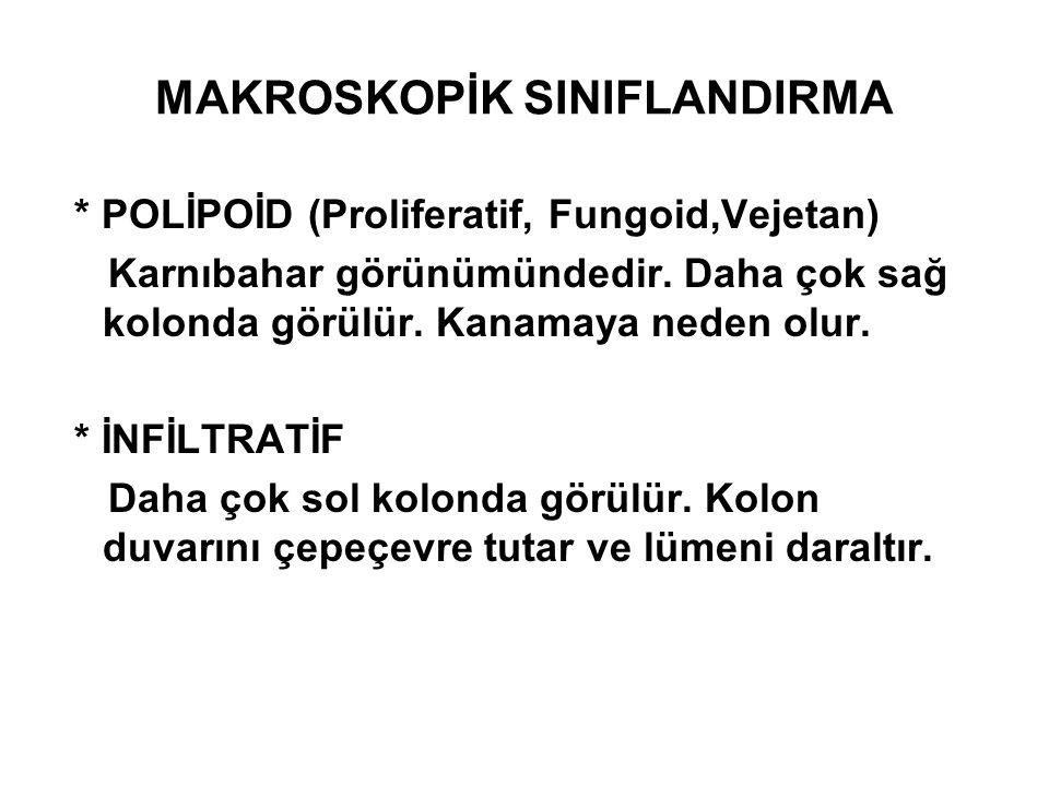 MAKROSKOPİK SINIFLANDIRMA