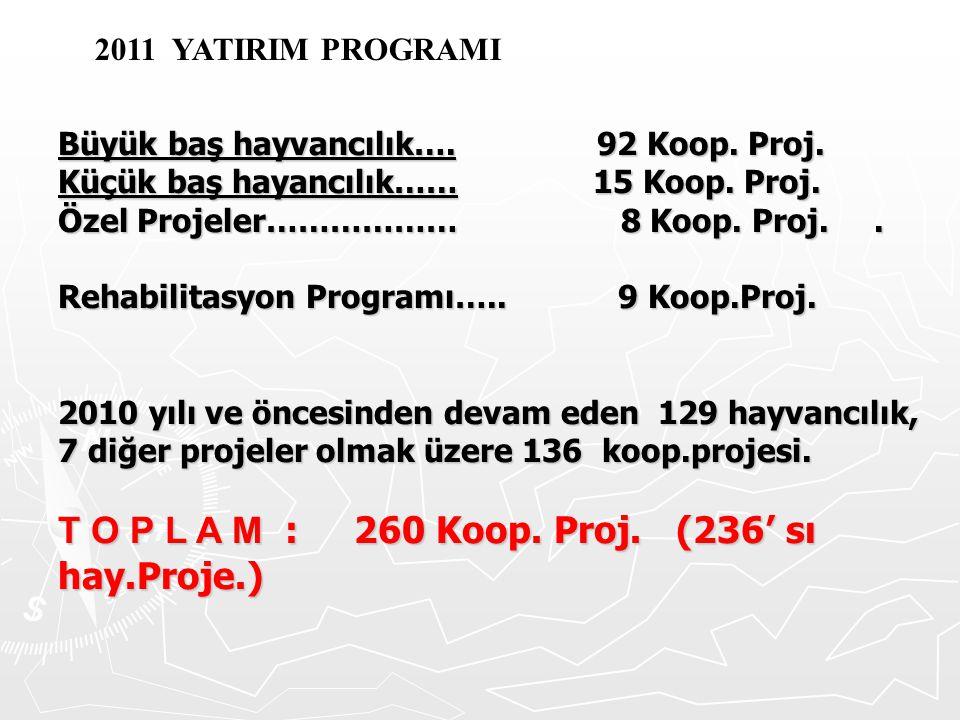 T O P L A M : 260 Koop. Proj. (236' sı hay.Proje.)