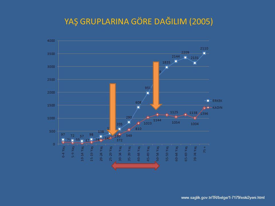 YAŞ GRUPLARINA GÖRE DAĞILIM (2005)