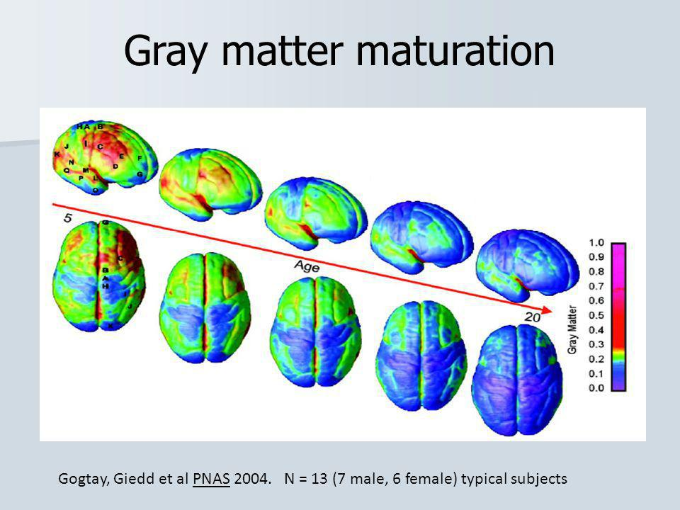 Gray matter maturation