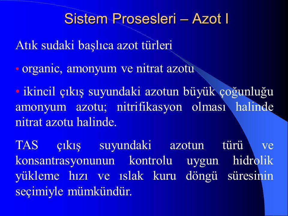 Sistem Prosesleri – Azot I