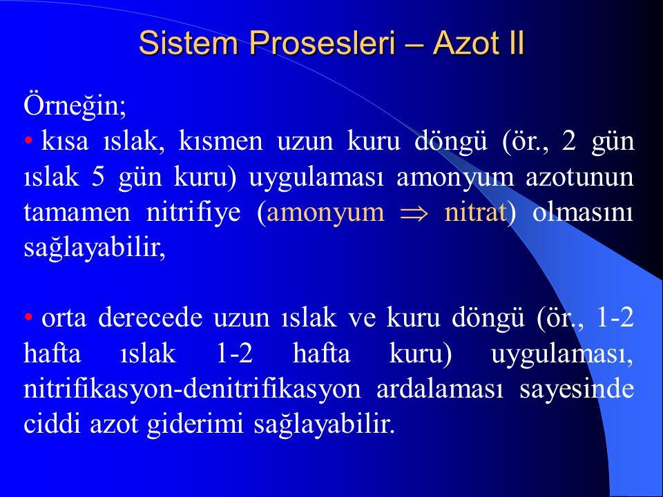 Sistem Prosesleri – Azot II