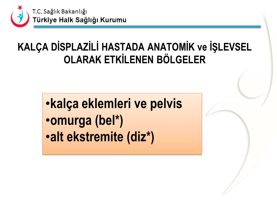 kalça eklemleri ve pelvis omurga (bel*) alt ekstremite (diz*)