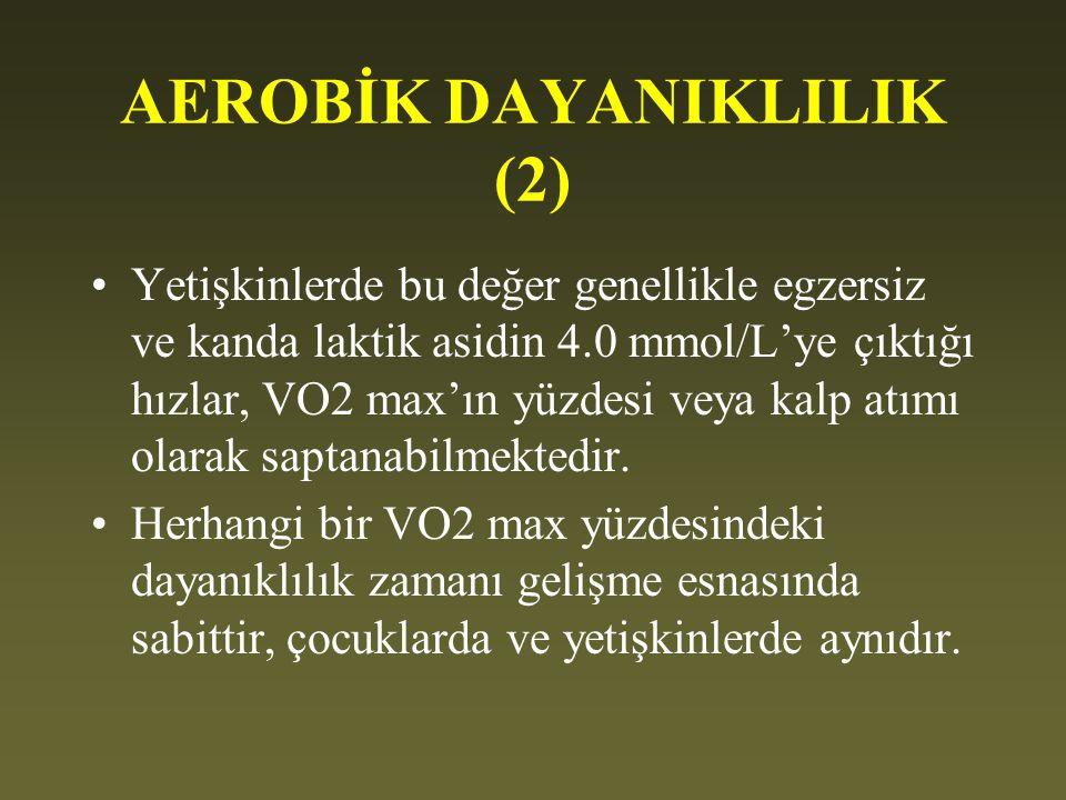 AEROBİK DAYANIKLILIK (2)