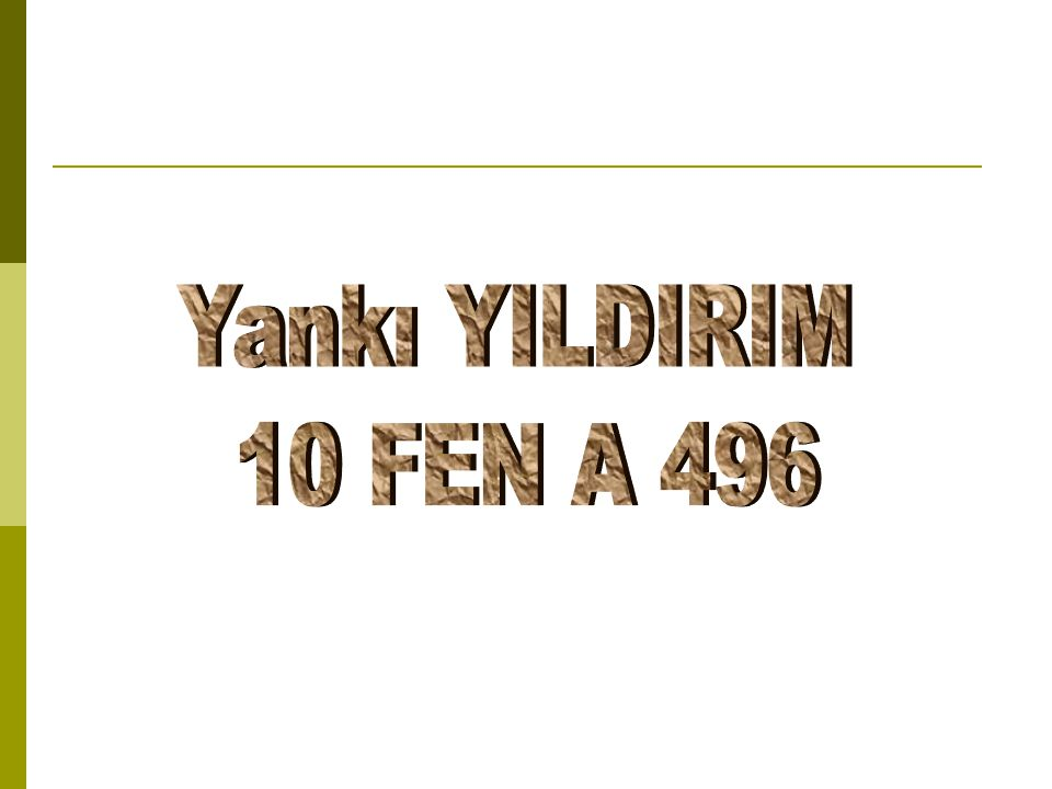 Yankı YILDIRIM 10 FEN A 496