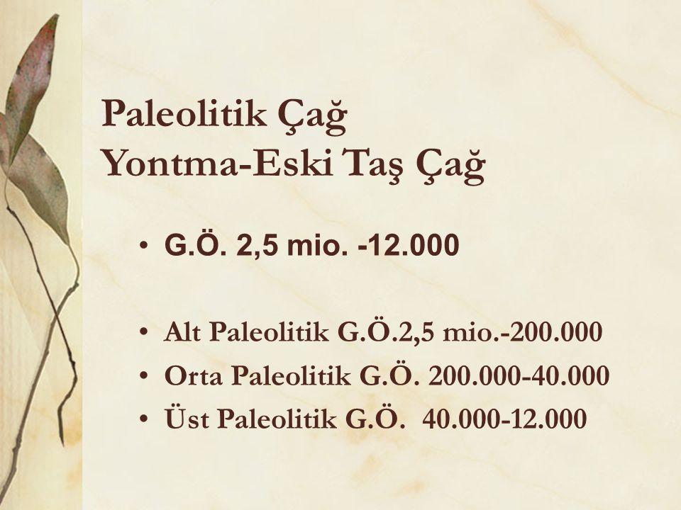 Paleolitik Çağ Yontma-Eski Taş Çağ