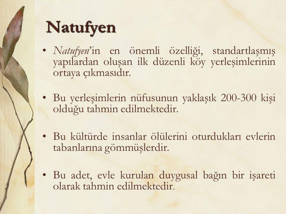 Natufyen Natufyen'in en önemli özelliği, standartlaşmış yapılardan oluşan ilk düzenli köy yerleşimlerinin ortaya çıkmasıdır.