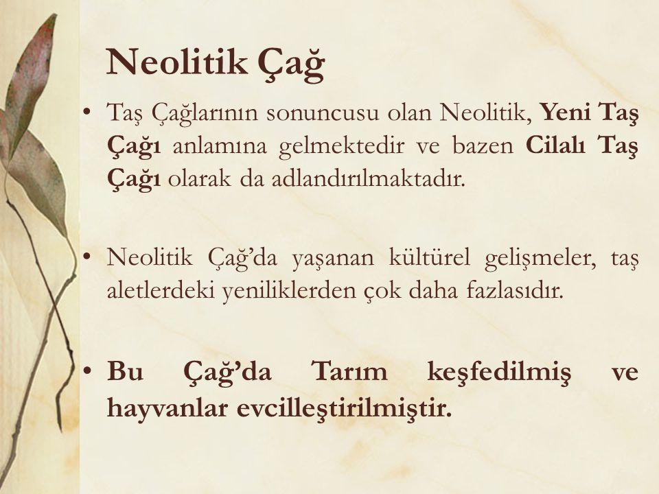 Neolitik Çağ Taş Çağlarının sonuncusu olan Neolitik, Yeni Taş Çağı anlamına gelmektedir ve bazen Cilalı Taş Çağı olarak da adlandırılmaktadır.