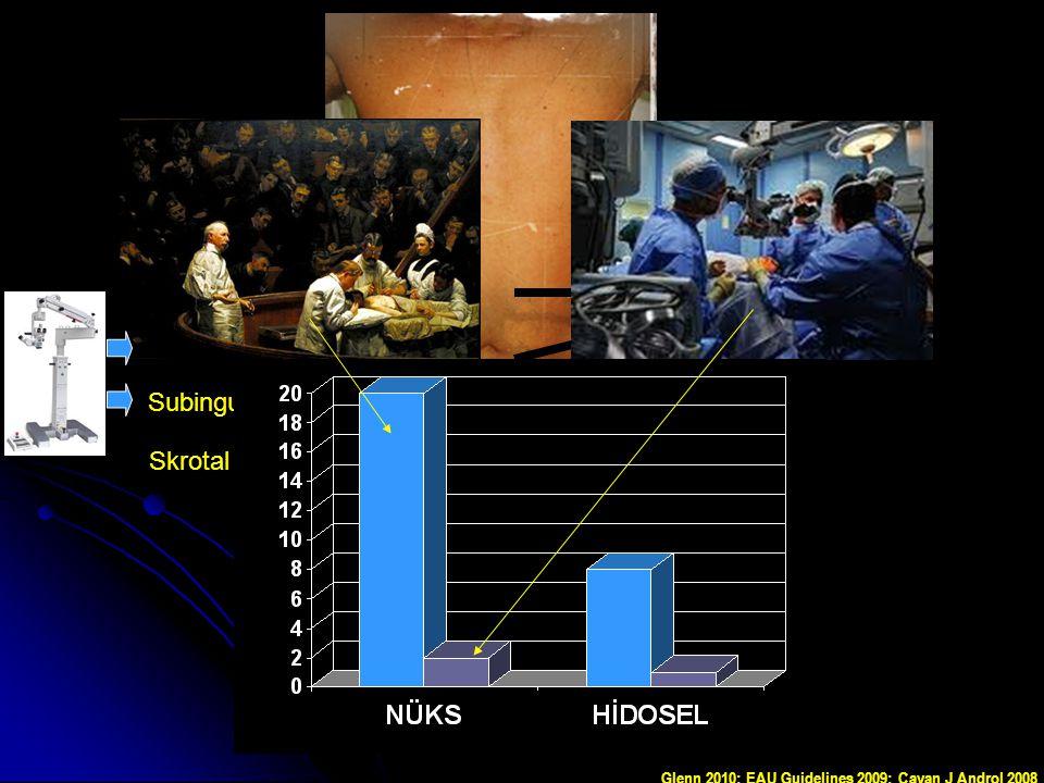 Nüks Hidrosel Yüksek ligasyon %20 %8 Subinguinal mik. %2 %0,4