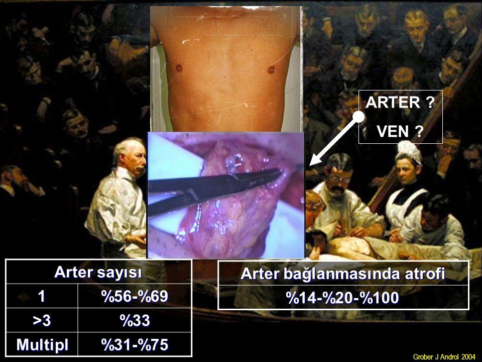 Arter bağlanmasında atrofi